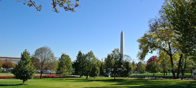 Washington afternoon