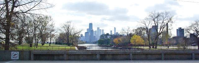 Chicago Skyline banner (1 of 1)
