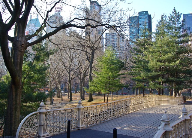 Central_park_jan_25